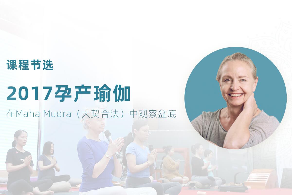 2017孕产瑜伽节选--在Maha Mudra(大契合法)中观察盆底